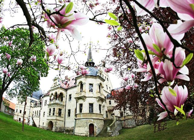 Start 15 - Schloss vom Rosengarten im Frühling