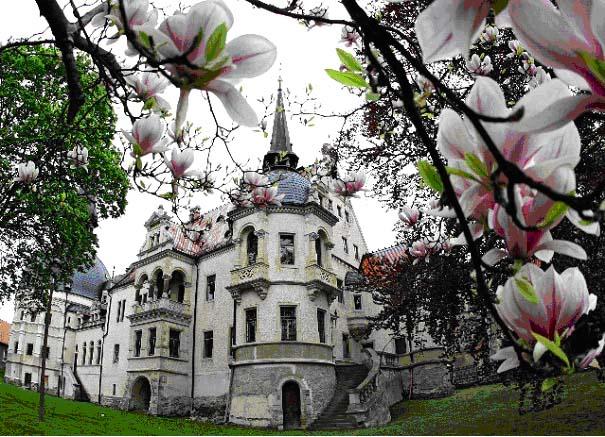 Kreative Frühlingstage & Tag der Parks und Gärten auf Schloss Schönfeld